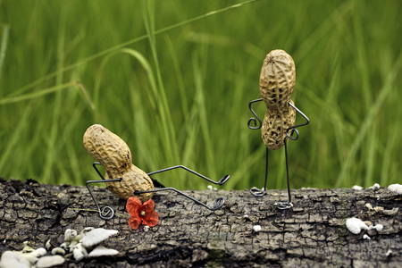 Angry peanut man pushing his competitor to the ground LANG_EVOIMAGES