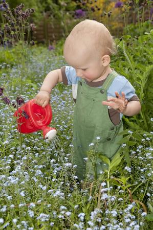 Small boy watering flowers