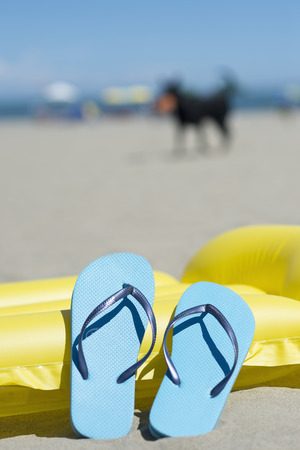 Pair of light blue flip-flops leaning on yellow airbed on the beach, dog walking in background
