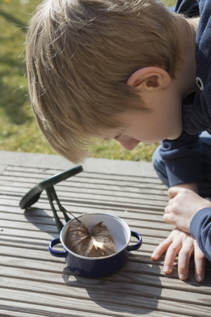Boy experimenting with magnifying glass and withered leaf