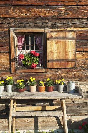 Austria, Salzburg State, Untertauern, Pongau, alpine cabin