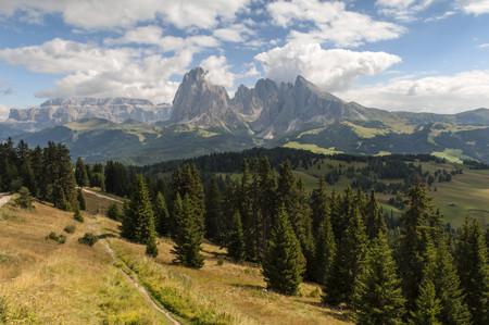 Italy, South Tyrol, Dolomites, Langkofel group, Seiser Alm