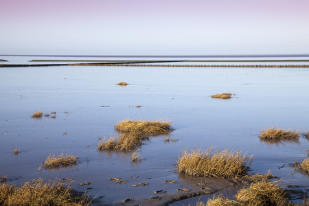 Germany, Lower Saxony, East Frisia, Lower Saxon Wadden Sea National Park