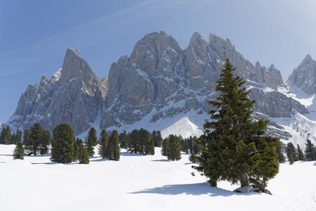 Italy, Alto Adige, Villnoess Valley, Geisler Alm below Sass Rigais