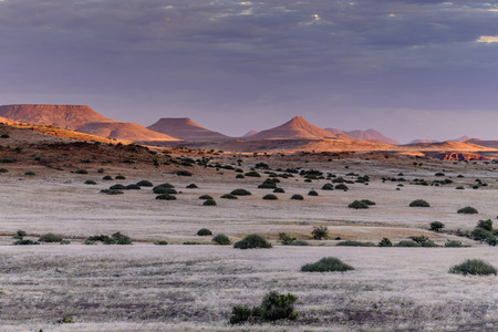 Africa, Namibia, Damaraland, view to grassland and volcanos by sunset
