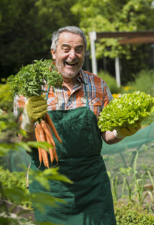 Germany, Hesse, Lampertheim, portrait of laughing senior gardener with bunch of carrots and head of lettuce