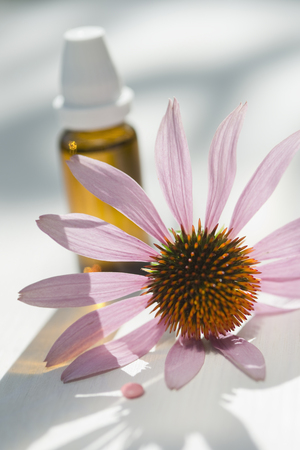 Pink pill, purple coneflower, Echinacea, and flask with solution
