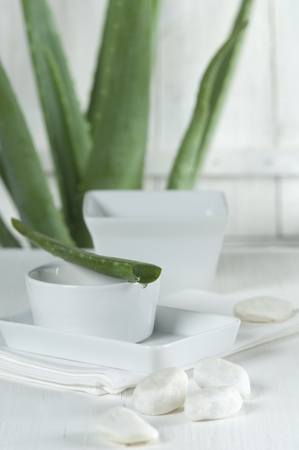 Sliced Aloe vera leaf and bowls