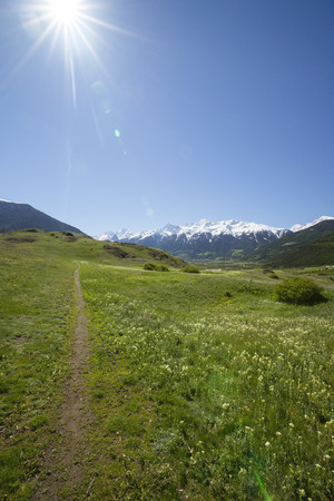 Italy, South Tyrol, Mals, Tartscher Buehel, Hiking path