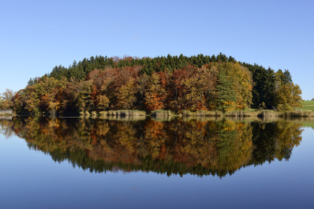 Germany, Bavaria, Upper Bavaria, Muensing, Degerndorf, Pond Sonderham LANG_EVOIMAGES