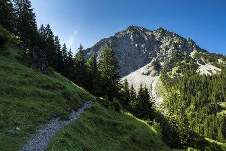 Germany, Bavaria, Allgaeu High Alps, Geisalp valley, Rubihorn Mountain