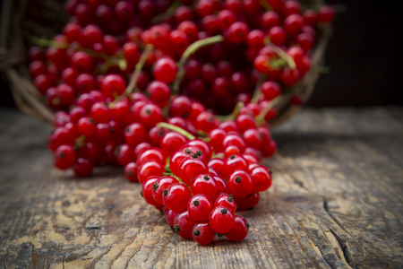 Red currants, Ribes rubrum, on dark wooden table