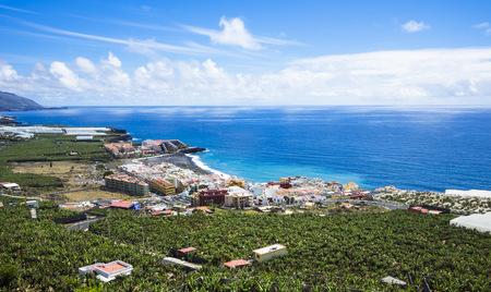 Spain, Canary Islands, La Palma, Puerto Naos, Banana Plantation