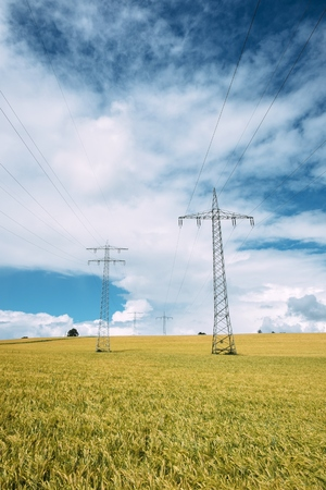 Germany, Baden-Wuerttemberg, Constance District, Barley Field And Power Pylons
