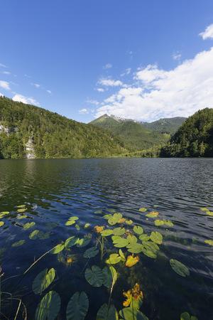 Austria, Salzburg State, Salzkammergut, St. Gilgen, Krotensee Lake With Schafberg Mountain LANG_EVOIMAGES