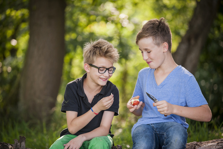 Two Boys Sitting On A Tree Trunk Cutting An Apple With A Pocket Knife LANG_EVOIMAGES