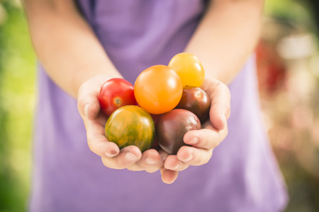 Germany, Girl Holding Heirloom Tomatoes LANG_EVOIMAGES