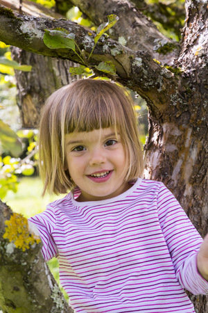 Portrait Of Smiling Little Girl Sitting On An Apple Tree