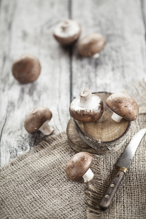 Brown Button Mushrooms, Agaricus, And A Knife On Tree Pits, Jute And Wood