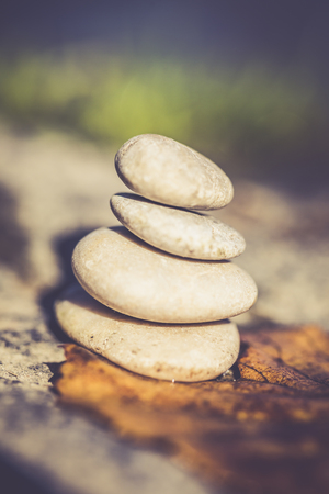 Stack Of Four Pebbles And An Autumn Leaf At Sunlight