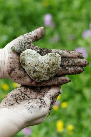 WomanS Hands Holding Heart Shaped Potao LANG_EVOIMAGES