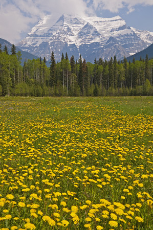 Canada, British Columbia, Rocky Mountains, Mount Robson, Mount Robson Provincial Park