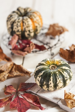 Different Small Pumpkins, Wooden Board And Autumn Leaves