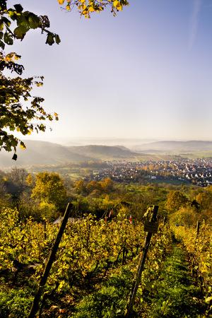 Germany, Baden-Wuerttemberg, Nature Park Schoenbuch, View To Entringen In Autumn