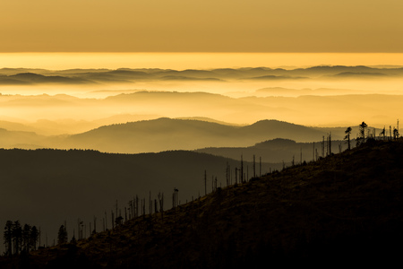 Germany, Bavaria, Bavarian Forest National Park, View from Great Arber with waft of mist at sunset