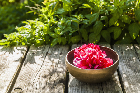 Bowl with blossom on wooden terrace