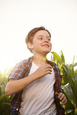 Boy running through maize field at backlight LANG_EVOIMAGES