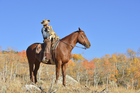 USA, Wyoming, Big Horn Mountains, cowgirl sitting on horse with her dog