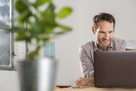 Smiling businessman looking at laptop in office LANG_EVOIMAGES