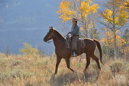 USA, Wyoming, Big Horn Mountains, riding cowgirl in autumn