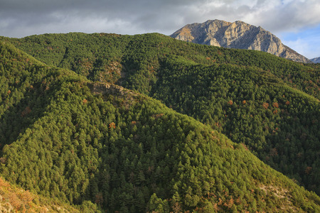 Spain, Ordesa National Park, mountainscape with forest