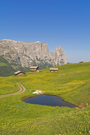 Italy, South Tyrol, Seiser Alm with wooden huts and Schlern group in the background
