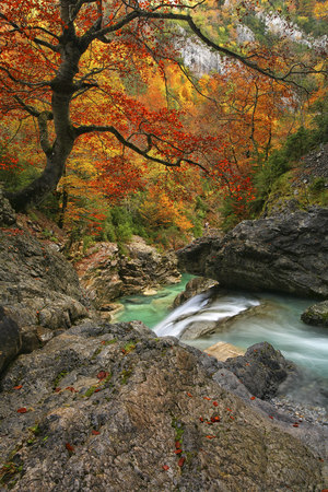 Spain, Ordesa National Park, river Anisclo