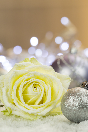 Silver Christmas bauble and rose blossom on artifical snow
