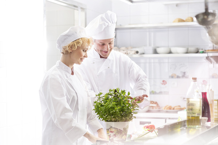 Two chefs in kitchen preparing food