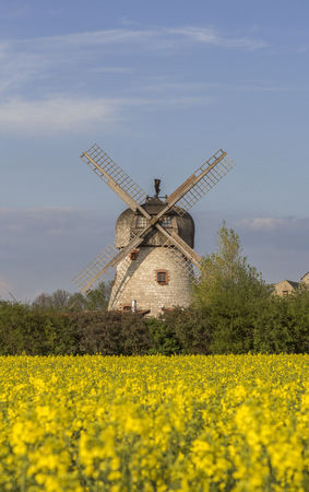 Germany, Soellingen, wind mill and flowering rape field