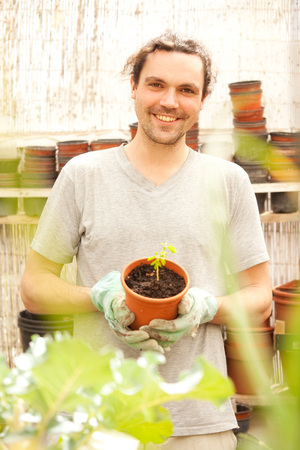 Smiling man holding flowerpot with Moringa seedling