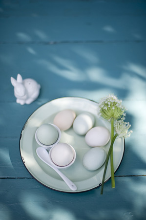 Easter decoration, Easter eggs on plate, egg cups and blossoms