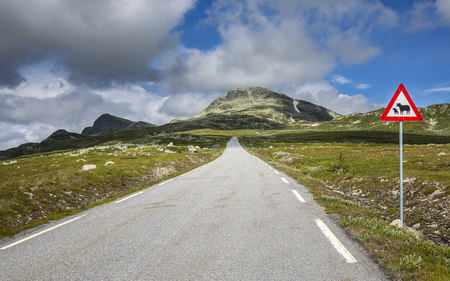 Norway, Southern Norway, Telemark, Hjartdal, empty road LANG_EVOIMAGES