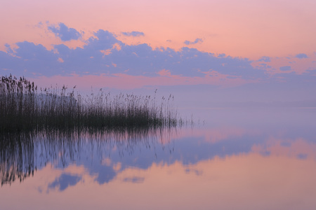 Germany,Mecklenburg-Vorpommern,Mecklenburger Seenplatte,Plau Am See,View Of Sunrise With Reeds And Reflection In Lake