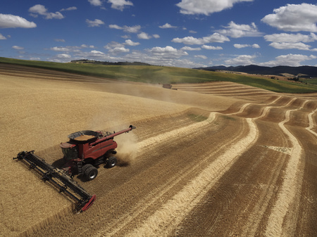 USA, Washington State, Palouse hills, wheat field and combine harvester LANG_EVOIMAGES