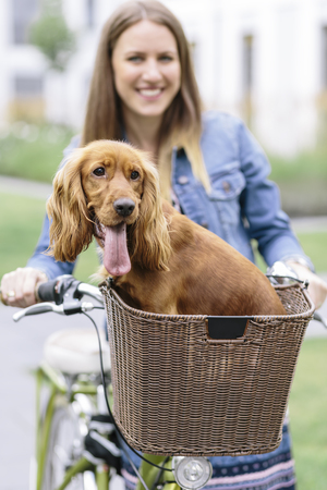 Smiling woman with dog in bicycle basket