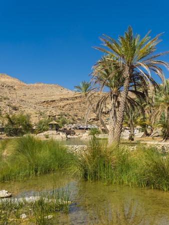 Oman, Sharqiyah, oasis at Wadi Bani Khalid LANG_EVOIMAGES