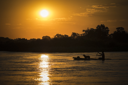 Namibia, man and dog crossing Okavango River with Mokoro at sunset