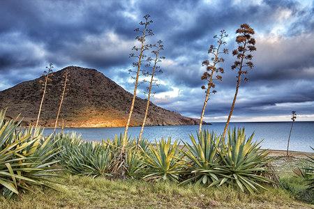 Spain, Natural Park of Cabo de Gata-Nijar, Playa de los Genoveses LANG_EVOIMAGES