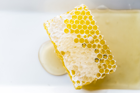 Honeycomb and honey on plate